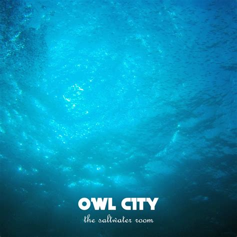 owl city saltwater room the saltwater room by thatguyinthepicture on deviantart