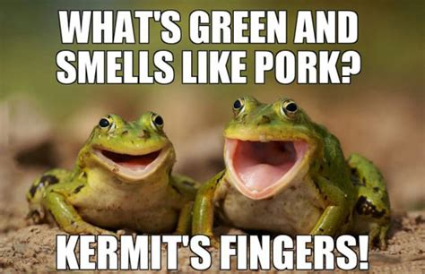 Horny Toad Meme - two happy frogs joking around