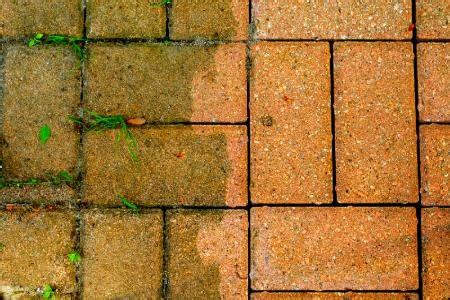 Patio Pavers Weeds How To Combat Patio Paver Problems Naturally