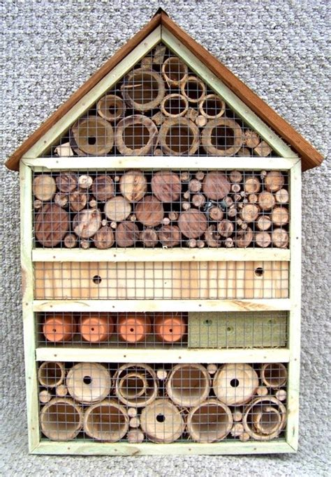 carpenter bee house how do i get rid of carpenter bees macrumors forums