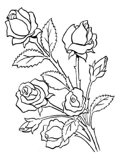imagenes para dibujar en color imagenes de rosas para dibujar a color
