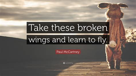 take these broken wings and learn to fly tattoo paul mccartney quotes 100 wallpapers quotefancy
