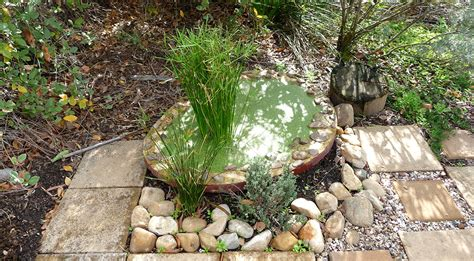 water conservation  harvesting  adelaide