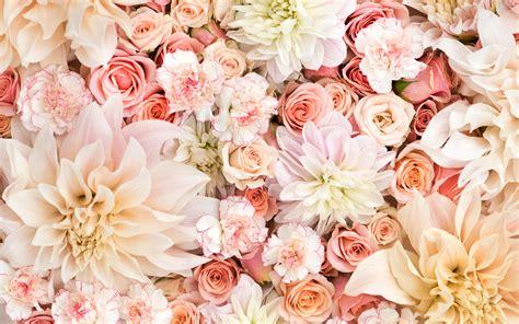 wallpaper flower for home pc wallpaper flower download desktop wallpaper of flowers