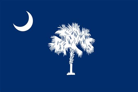 carolina state south carolina state flag flagnations