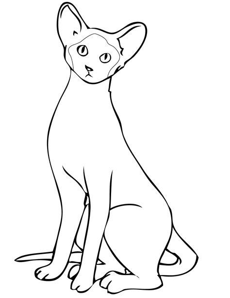dibujos para pintar gatos imagen de gatos para imprimir dibujos de