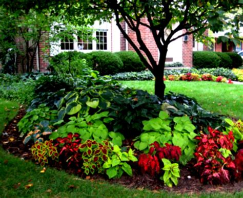 beautiful front yard flower beds the landscape design garden landscaping entrancing homelk com
