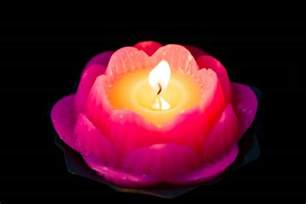 Lotus Candle Candles Wonderful Lotus Candle Design Cool Birthday Candles Lotus Floating Candles All About