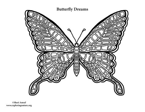 Butterfly Dreams butterfly dreams coloring nature