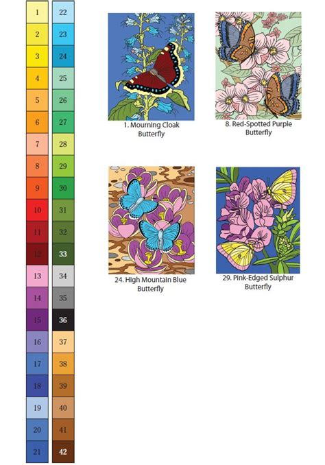 decipaint photographic color by number marine books coloring pages image photo album color by numbers coloring