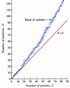 How Is Nuclear Stability Related To The Neutron Proton Ratio Unit Ii