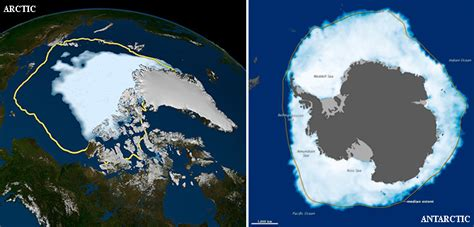 why is antarctic sea ice growing physorg news and nasa opposite behaviors arctic sea ice shrinks