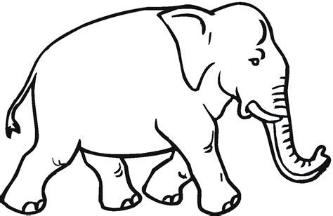 Elephant Coloring Page by Free Elephant Coloring Pages