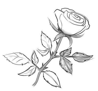 come disegnare fiori come disegnare un fiore a matita