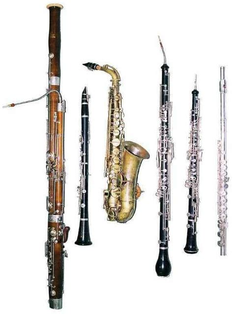 Wind Section Instruments by Woodwind Instruments Powered By Oncourse Systems For