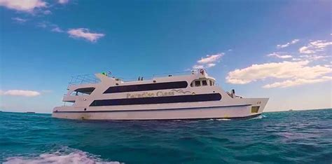 boat trip hurghada paradise class the best glass boat trip in hurghada