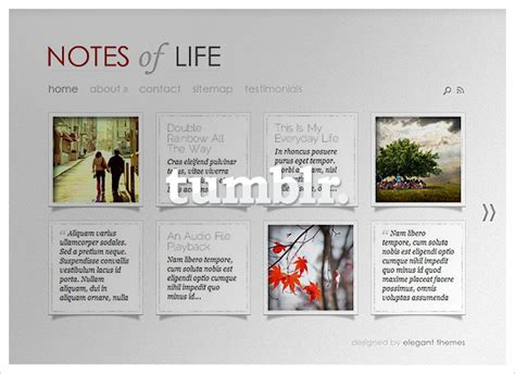 elegant themes gallery template dailynotes now on tumblr elegant themes blog