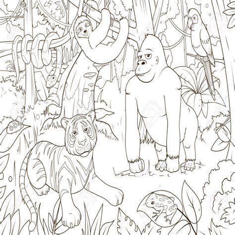 imagenes para colorear animales de la selva 10 dibujos de animales de la selva para colorear