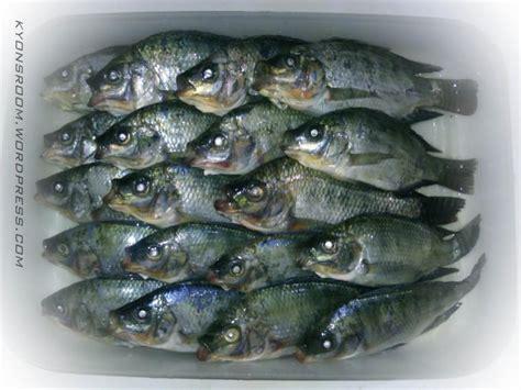 Ikan Nila Kecil lima anak kecil dan ikan nila oleh kyon asma kompasiana