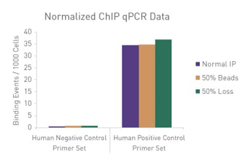 chip qpcr protocol active motif 187 chromatin immunoprecipitation chip