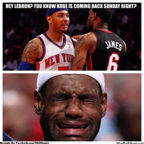 Kobe Lebron Meme - 28 best images about funny lebron on pinterest chris
