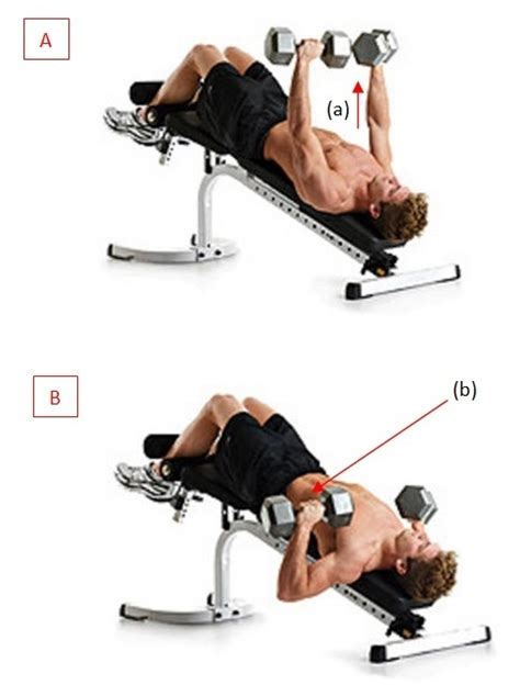 dips or bench press 9 answers are there any substitutes for decline bench