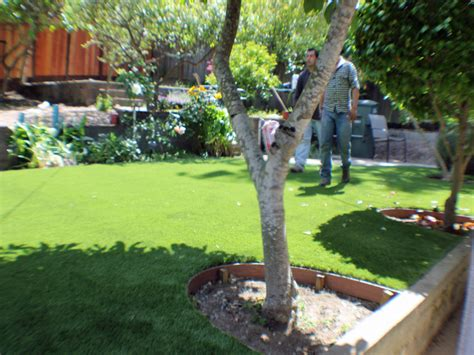 backyard creek ideas artificial grass coconut creek florida lawn and garden backyard ideas