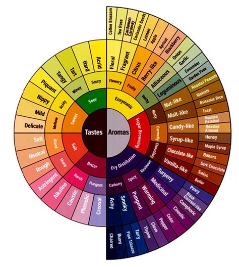 color pairings pairing flavour matching with espresso in baking
