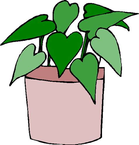 imagenes sarcasticas animadas imagenes de plantas animadas imagui