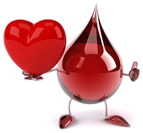 blood in cardiovascular system i physiology