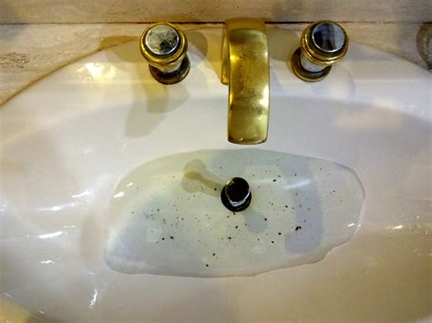bathroom sink drain clogged a clogged sink has many causes many are avoidable