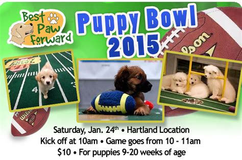 puppy bowl 2015 events