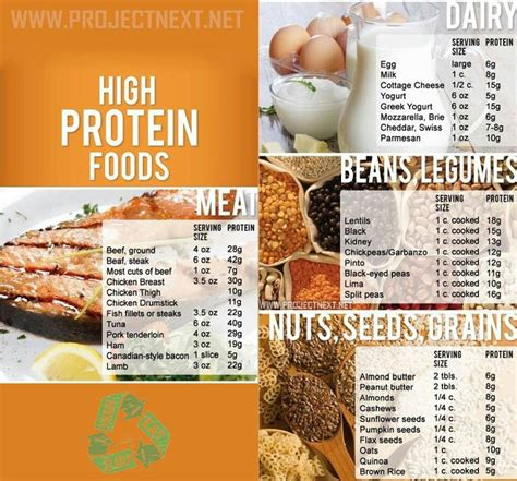The Best Diet Foods High In Protein by High Protein Foods Let S Get Healthy