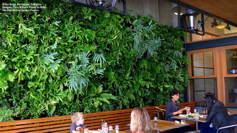 Vertical Garden Restaurant Florafelt Vertical Garden Planters And Living Wall Systems
