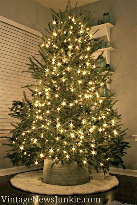 how to set up real christmas tree home design interior