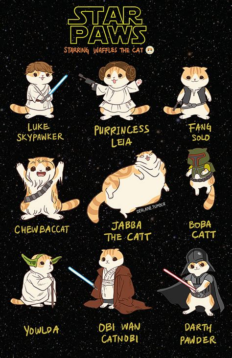 Star Wars Cat Meme - star paws starring waffles the cat