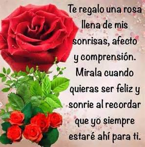 imagenes de rosas rojas con frases de buenos dias m 225 s de 17 ideas fant 225 sticas sobre rosas rojas en pinterest