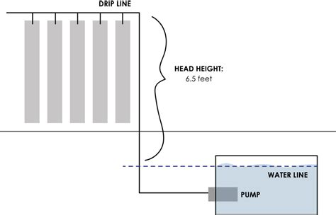 Fish Tank Bed Sizing A Pump For Hydroponics Or Aquaponics Upstart