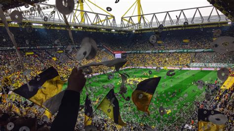 best fans in the signal iduna park dortmund germany the best fans in