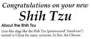 shih tzu pronunciation dictionary how to pronounce shih tzu the true detailed pronouncation meaning