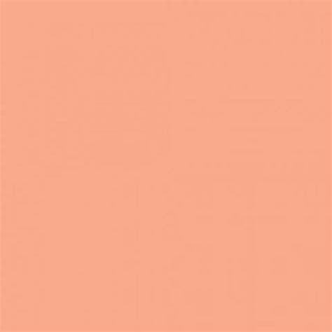 what color is salmon light salmon orange color