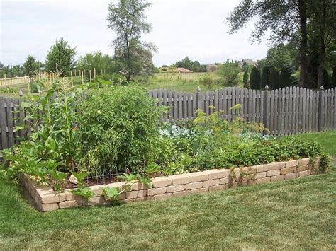 the layout of your vegetable garden tips for vegetable