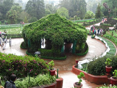 Indian Botanical Garden I Am A Free Spirit And Lover Of India Botanical Garden To Ooty