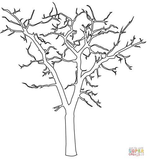 Dead Tree Outline Coloring Page Free Printable Coloring Tree Coloring Page Outline