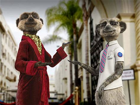 Image Gallery Meerkat Advert 2016