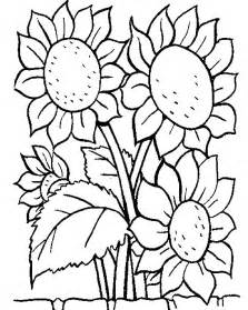 flower coloring pages 7 flowers coloring pages