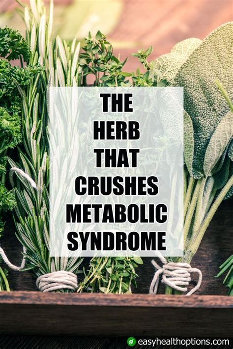 15 Signs You Metabolism Problems by Best 25 Metabolic Symptoms Ideas On