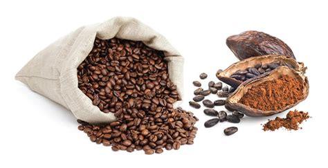 Cocoa Coffee coffee and cocoa rieckermann