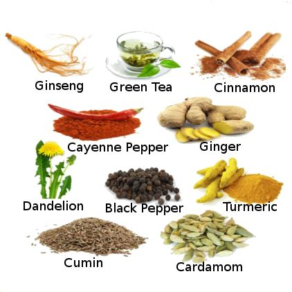 weight loss naturally 6 herbs for weight loss
