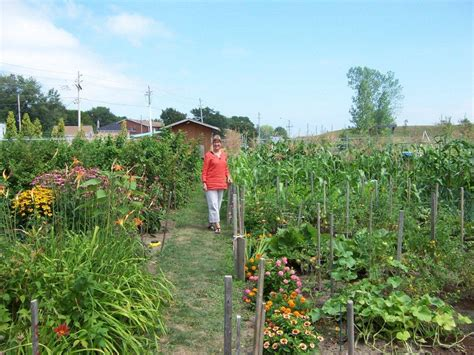 types of community gardens all things food bouffe 360 healthy local food for all